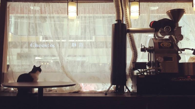 新北永和「 喬茵咖啡 」,貓與咖啡的對話