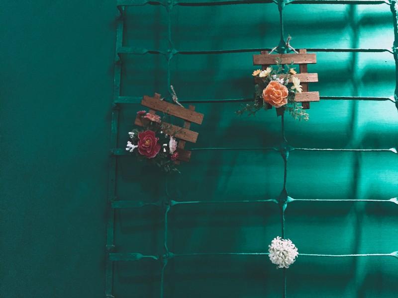 新北永和,永安市場站的 3C CAFE 的花與牆,整個牆面是綠色的。