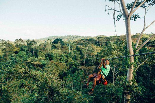 哥斯大黎加 樹林