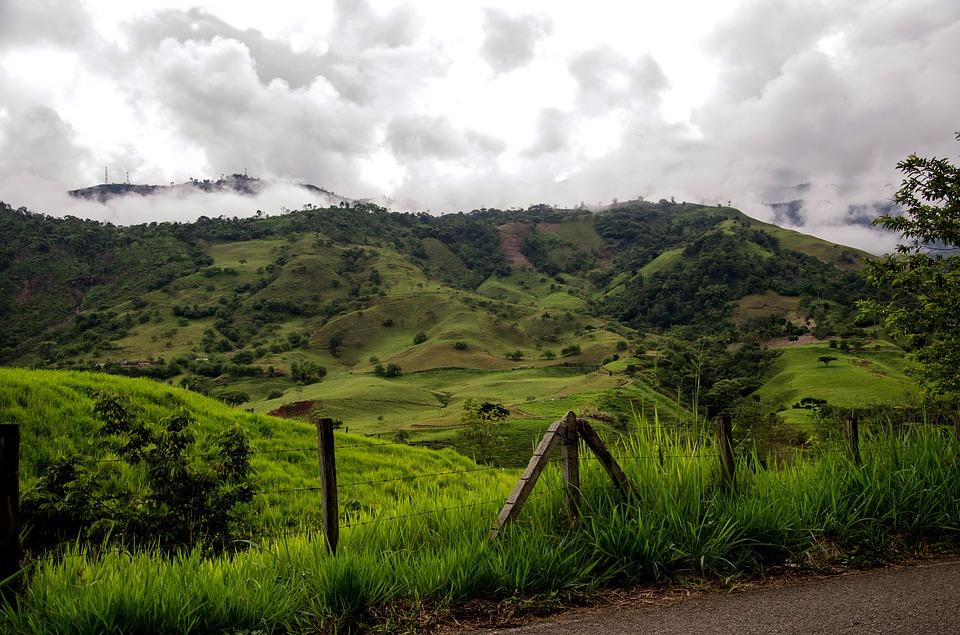 哥倫比亞咖啡產區