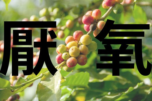 厭氧處理-厭氧發酵-咖啡豆-精品咖啡-處理法-手沖咖啡-咖啡市集-台灣-香港-澳門