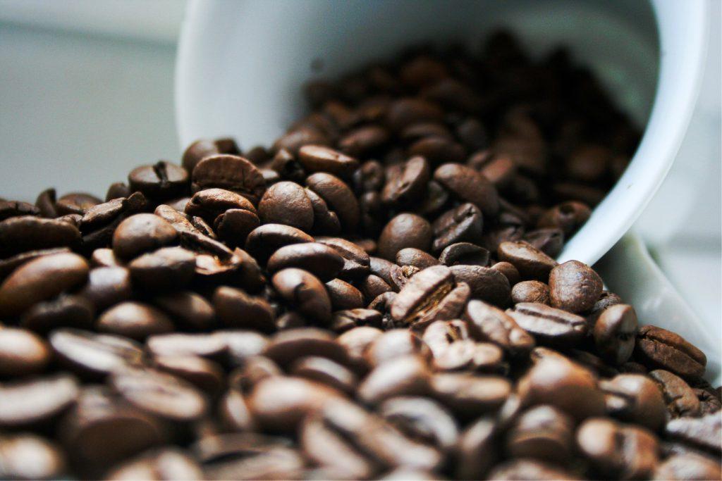 藝伎咖啡豆-示意圖