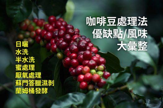 咖啡豆-咖啡櫻桃-處理法-日曬-水洗-半水洗-蜜處理-厭氧日曬-厭氧處理-蘭姆桶發酵-酒桶發酵-蘇門答臘濕剝處理法-溼剝處理法