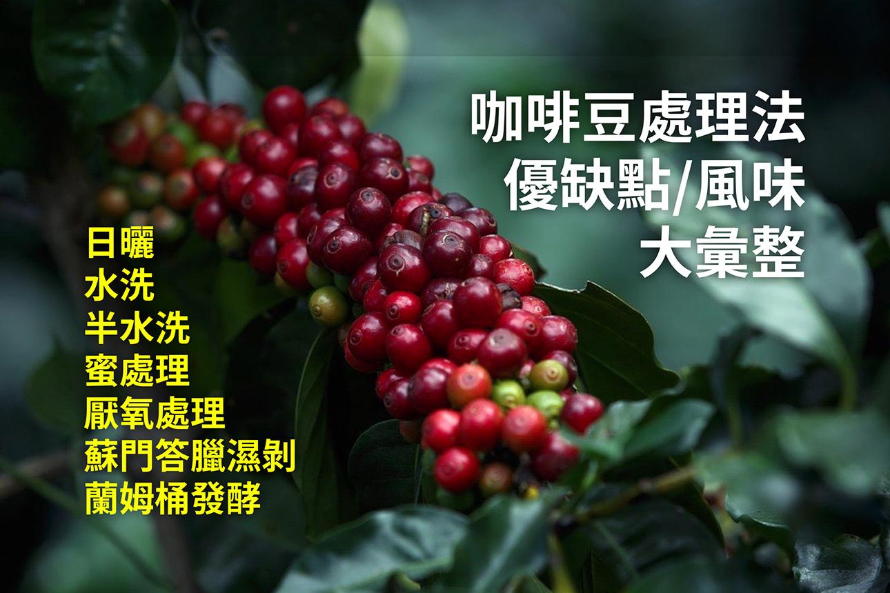 還搞不清楚各種咖啡處理法的來由嗎?咖啡市集帶大家看一遍!