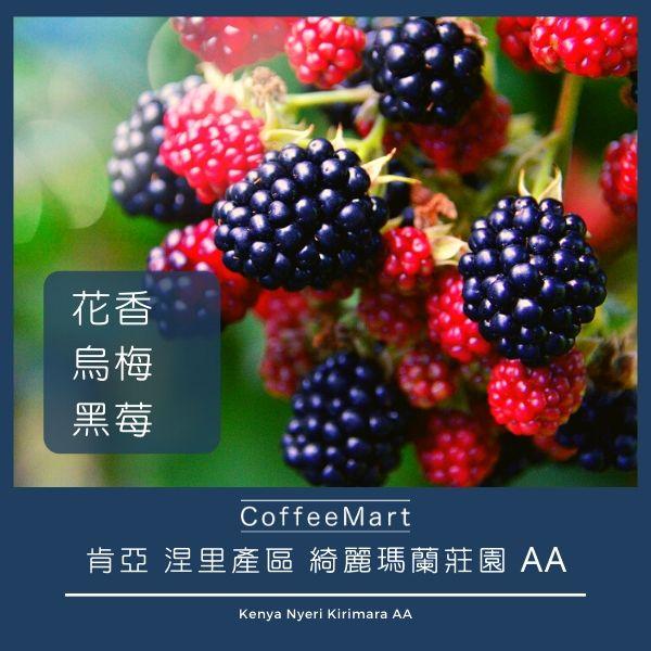 肯亞 涅里產區 綺麗瑪蘭莊園 AA 精品咖啡豆 台灣 香港 澳門 咖啡市集-coffeemart