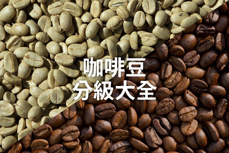 你懂咖啡豆的分級嗎?每個國家都不一樣
