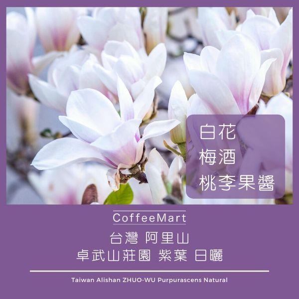 阿里山 卓武山咖啡莊園 紫葉 日曬 咖啡豆 精品咖啡 手沖咖啡