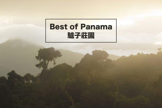 巴拿馬-咖啡-BoP-驢子莊園-咖啡莊園-藝伎豆-咖啡豆