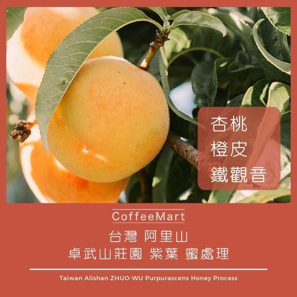 阿里山 卓武山莊園 紫葉 蜜處理 咖啡豆 精品咖啡 手沖咖啡