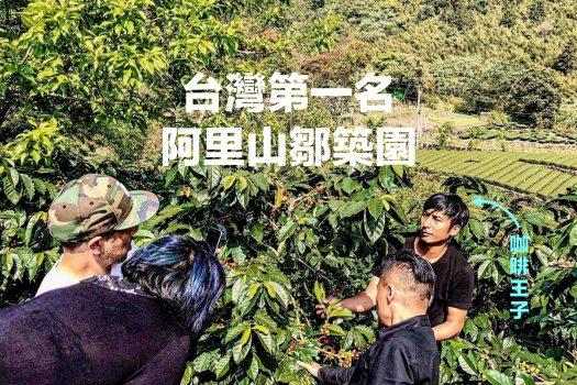 阿里山鄒築園-咖啡莊園-台灣咖豆-精品咖啡豆-手沖咖啡-藝伎咖啡-geisha