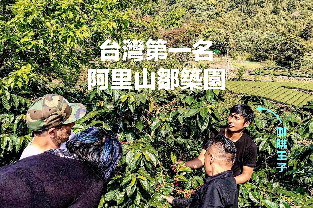 阿里山 鄒築園 精品咖啡莊園,國際知名的高海拔台灣莊園