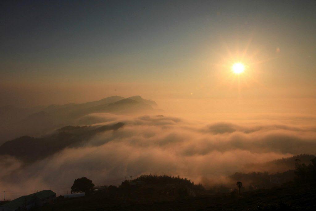 阿里山日出-鄒築園-景品咖啡-咖啡莊園