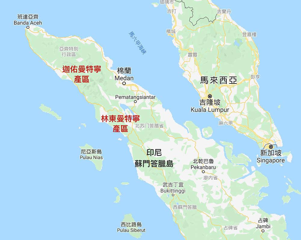 印尼 蘇門答臘 曼特寧 咖啡豆 林東曼特寧 迦佑曼特寧