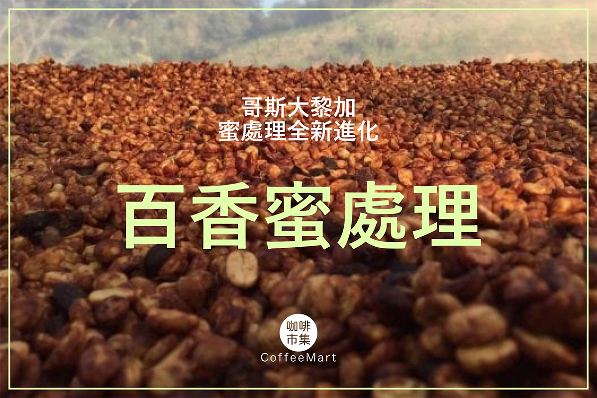 蜜處理全新進化「百香蜜處理」,2019 哥斯大黎加 CoE 第五名咖啡豆的秘密!